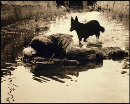 Fotograma de Stalker (Andrei Tarkovsky)